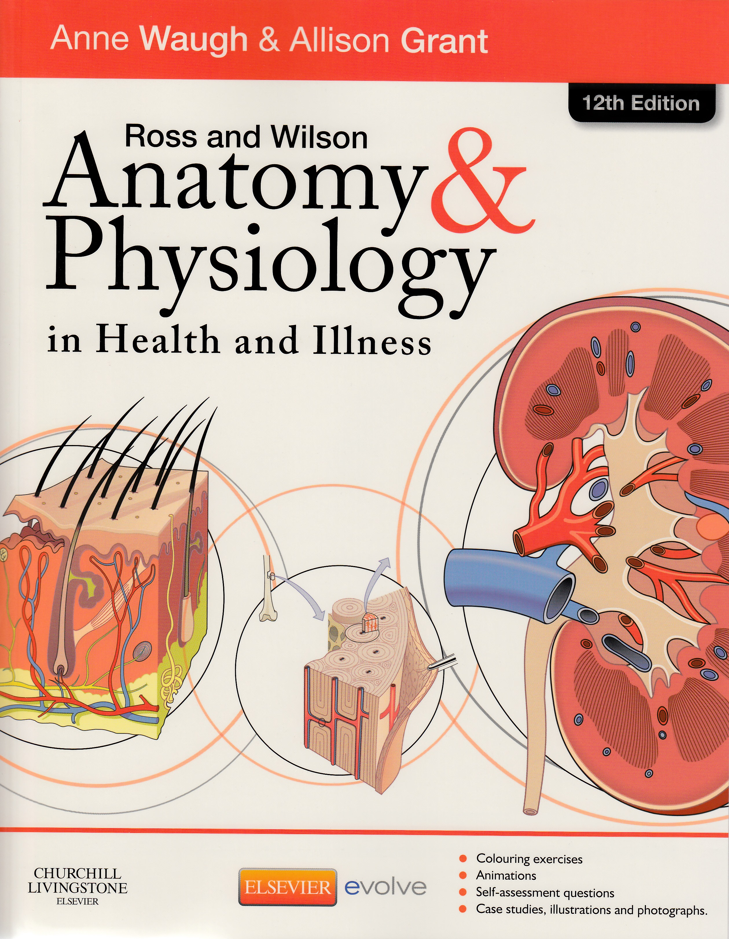 Anatomy & Physiology in Health and Illness